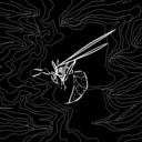 featherlight-bones