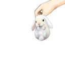 zero-bunny