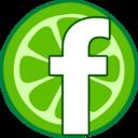 flimetree-blog