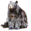 beartrx-blog