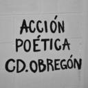 accion-poetica-cdobregon-blog
