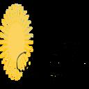 karinalucidlaw