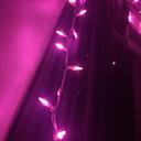 pinkcactusprincess