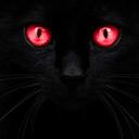 1evilpussycat