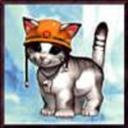 agentwrongcat