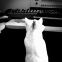 ktpn-musik