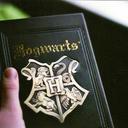 hogwartshousediaries-blog