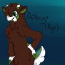 pyroderp-blog
