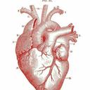 cardioeroticalover