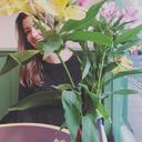 lockieart-blog