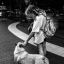 cotorraspurpuras-blog