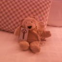 Business Travel Bear