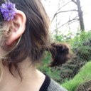 antlersprouts-blog