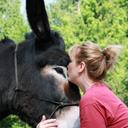 donkeywhisperer