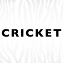 cricketfashion
