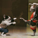 martial--arts