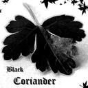 blackcoriander