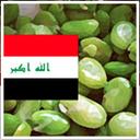 irakiskmat