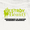 destroyvsbeauty