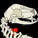bone-vulture-lu