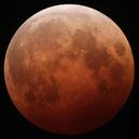 moonfootblupin