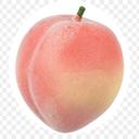 persicakeen