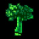 broccolibabe
