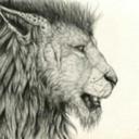 thejasmineillustrator
