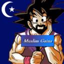 muslimgains