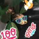 pixeltheleopardgecko