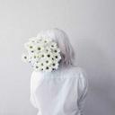mr-jeon-seagull-blog
