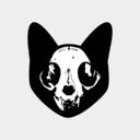 skeletoncatdesigns