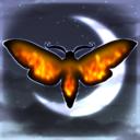 mothflamess