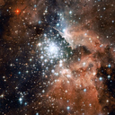 starsparadoxica