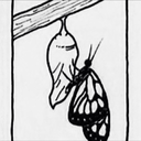 caterpillaar
