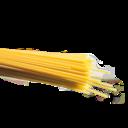 lentospagetti