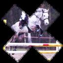 equestrianchallenge
