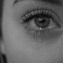 little-birdy-suicide-blog