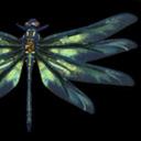 chimericaldragonfly