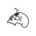 tiny-fern-blog