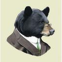 the-bifocal-bear