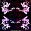 annes-lace