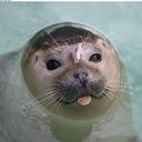 sealfarts