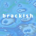 brackishbrooklyn