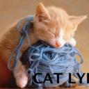 thiscatlyfe-blog