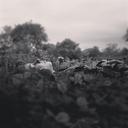underhillwaters-blog-blog