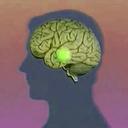 psychonautical