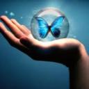 shesleepswithbutterflies-blog