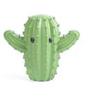 cactuscomrades