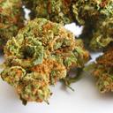 Los Angeles Medical Marijuana Reviews Ferrari Og Indica